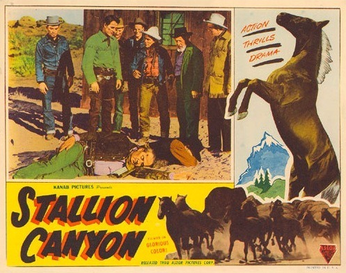 Poster for the Movie, Stallion Canyon