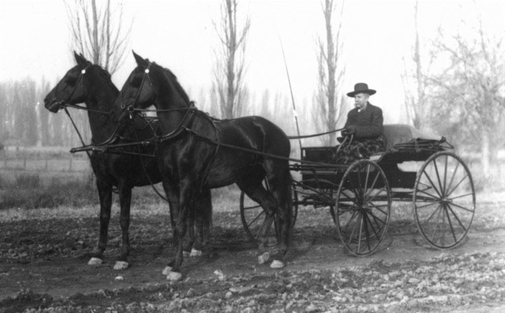 Dr. Silas G. Higgins in carriage